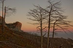 Закат в горелом лесу. Алупка