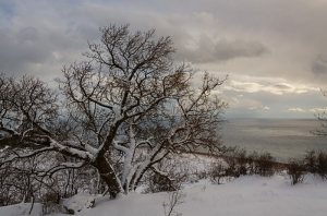 Crimean Winter. Snow