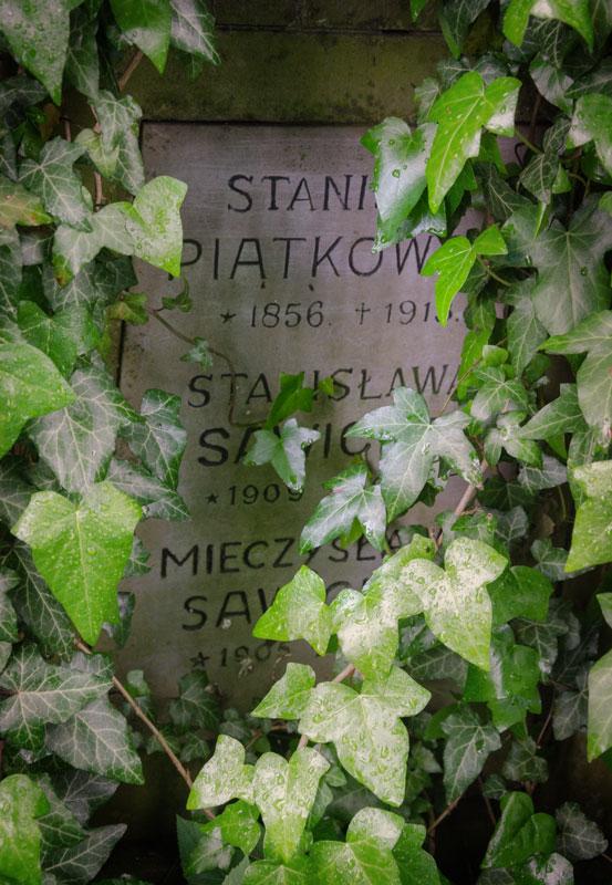 Львов. Польское кладбище